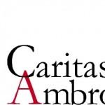 Giornata Caritas diocesana